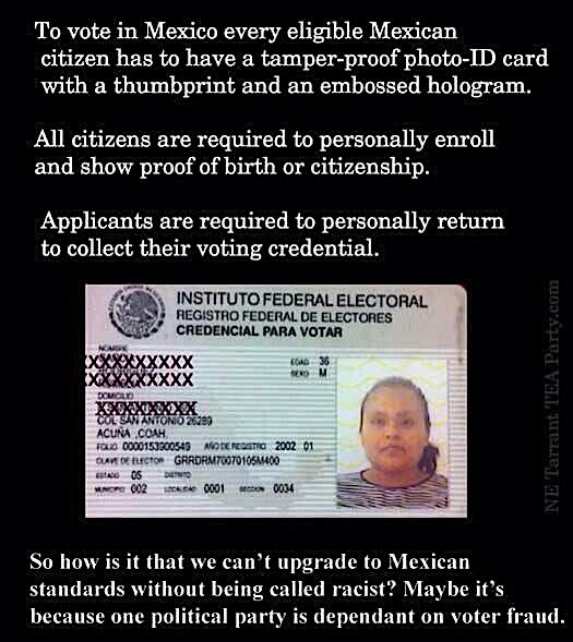 Mexican Voter ID Card